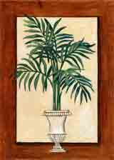 parlour palm botanical art and plant life gifts, paintings of flowers and botanical prints by artists Jane Billman and Gregg Billman